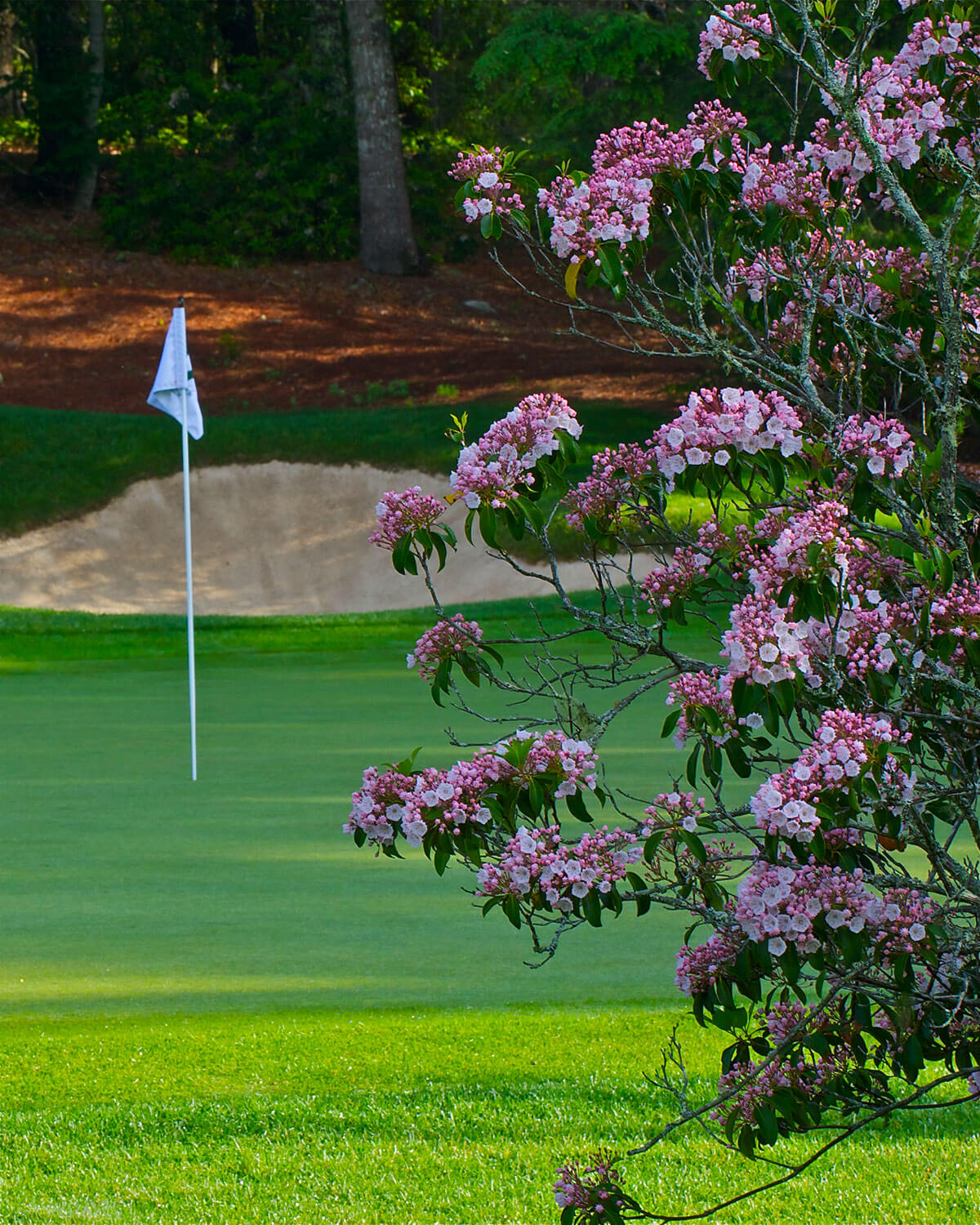 Wade Hampton Golf Club - The Course - Cashiers-Highlands NC Real